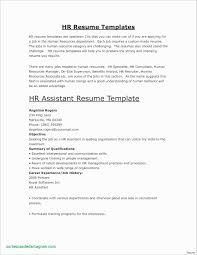 Resume Templates For Store Keeper New Experience Certificate Sample Storekeeper Retail Pharmacist