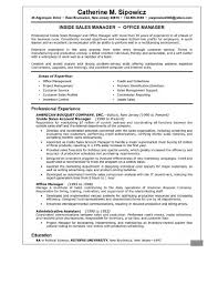 Sales Manager Resume Summary Examples Executive Template