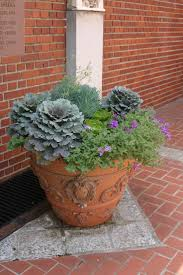 97 Best Winter Plants Images On Pinterest | Winter Plants, Winter ... 484 Best Gardening Ideas Images On Pinterest Garden Tips Best 25 Winter Greenhouse Ideas Vegetables Seed Saving Caleb Warnock 9781462113422 Amazoncom Books Small Patio Urban Backyard Slide Landscaping Designs Renaissance With Greenhouse Design Pafighting Fall Lawn Uamp Gardening The Year Round Harvest Trending Vegetable This Is What Buy Vegetables Fresh And Simple In Any Plants Home Ipirations
