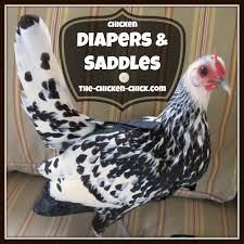 Chicken Saddles & Chicken Diapers