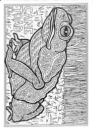 Free Coloring Pages Of Aboriginal Turtle Pattern