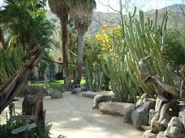 Botanical Garden in Palm Springs CA