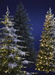 Fiber Optic Christmas Trees The Range by Christmas Shop
