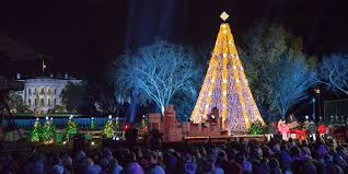 Rockefeller Christmas Tree Lighting 2014 Watch by Famous Christmas Trees From Around The World