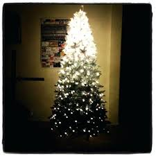 Trees And Decorations A Global Social Network Community Black Ombre Christmas Tree 5ft