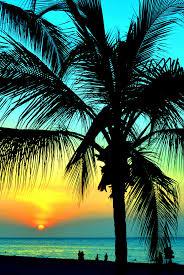Drawn Sunset Hawaii Beach 10