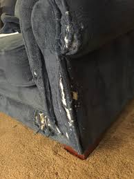 Microfiber Sofas And Cats by Repairing A Cat Scratched Thriftyfun