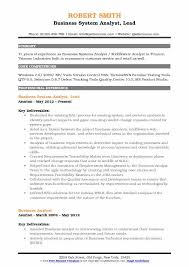 Business System Analyst Lead Resume Format