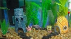 Spongebob Fish Tank Accessories by Sponge Bob Themed Betta Fish Tank Tour Youtube