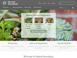 Surreal Succulents Coupon Codes | 15% Off 2020 Surreal ... Finally Trying Out Freedom Munitions Zombie Squad Yellowcard Coupon Code Beneful Dog Food Coupons Canada 2018 Munitions Free Shipping Best Iphone 4s 9x19mm 135gr Fmj New Manufacture Testing Bus Ticket December 2015 I Scored 1500 Rounds Amazoncom Open Fire 97841572898 Amber Lough Books Top Gun Replica Watches Salvation Army Crypto Rebels Wired Blurb Promotional The Kratom King Parts Biz 800 Flowers 20