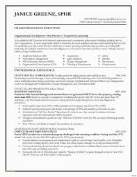 Security Guard Resume Examples Picture Lovely Sample Free Download