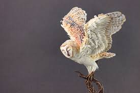 Winter Spirit Barn Owl By Hontor On DeviantArt 382 Best Barn Owls Images On Pinterest Barn Owl Photos And Beautiful My Sisters Favorite It Used To Be Mine Pin By Hans De Graaf Uilen Bird Animal Totem Native American Zodiac Signs Birth Symbolism Meaning Dreams Spirit 1861 Snowy Saw Whets 741 Owls Birds 149 Animals 2 Snowy Owl Necklace Ceramic Pendant The Goddess Touch Animism Youtube Pole Trollgirl Deviantart