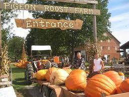 Leeds Pumpkin Patch Columbus Ohio by A 17 Legjobb ötlet A Következőről Pumpkin Patch Columbus Ohio A
