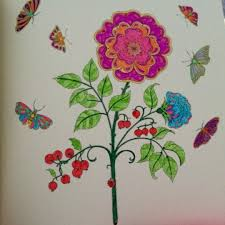 54 Best Secret Garden Rose Butterflies Images On Pinterest