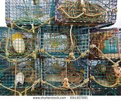 Decorative Lobster Traps Large by Lobster Traps Stock Images Royalty Free Images U0026 Vectors