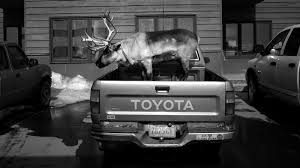 Dashing Through The Snow ... With A Reindeer In A Pickup Truck ... Alaska St Paul Island Bering Sea Fourth Of July Or June Brochurescoent Writing Answers Bus Pickups Involved In Crash On Main Street Springfield Kval List Truck Types Tractor Cstruction Plant Wiki Fandom Jc Grigg Twitter Gold Dredging Watch Hub Cap Truck Wheel Stock Photo Royalty Free 676009807 2000 Hyundai Md 23 Low Mileage 24 Valve Cummins Diesel Ld15 Dump Item E5591 Sold Thursday Oc Us And Equipment Llc Umnak Day 1 Welcome To Bering Ld15a 51040 Fuel Tanks Tpi Sv4195 Dash Assys American Chrome
