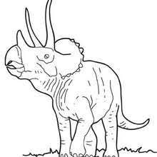 Triceratops Big Coloring Page