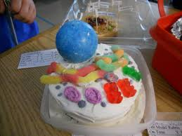 Animal Cell Cake Ideas