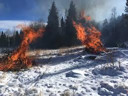 Christmas Tree Permits Colorado Buffalo Creek by Media Tweets By Usfs Pike U0026san Isabel Psicc Nf Twitter