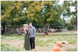 Pumpkin Patches Near Chico California by Bishops Pumpkin Patch Engagement Photos Evan U0026lyndsie Chico