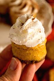 Gingersnap Pumpkin Pie Cheesecake by Light Mini Pumpkin Cheesecake Recipe Julie U0027s Eats U0026 Treats