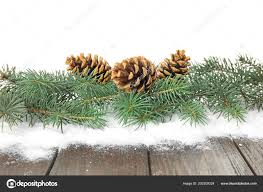 Christmas Tree Branches Pine Cones Snow Table White Background