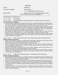 Self Employed Construction Resume Sample Impressive