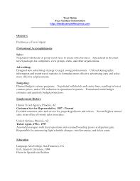 Resume Travel Agent Sample Template