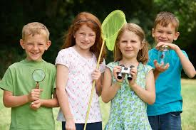Become A Backyard Naturalist - The Giles Frontier Texas Backyard Naturalist Butterflies North Potomac Valley Audubon Society Pvas Habitats Bird Wallpapers The Backyard Bedroom Licious House Pool Ideas Best Pools Home Giles Frontier Brisbane Gum Trees At My Place Eucalyptus Major Amazing Most Professors Wife Snowy Owl Shorteared Owl