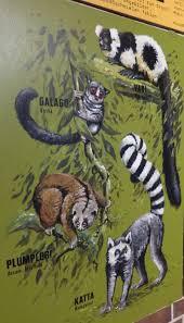 Enfant Dessiner Dessin Peinture Zoo Avec Les Animaux Chien Cochon