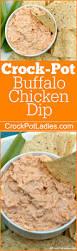 Pumpkin Pie Moonshine Crock Pot by Crock Pot Buffalo Chicken Dip Crock Pot Ladies