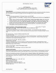 Software Testing Resume Samples 2 Years Experience Best Of Sap Abap Rh Acorrn Org Test Engineer Developer Summary