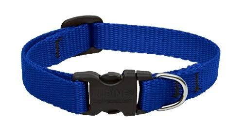 Lupine 17534 Adjustable Dog Collar - 8-12 in, Blue