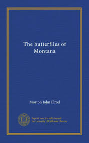 100 John Elrod The Butterflies Of Montana Morton Amazoncom Books