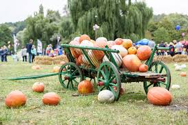 Circleville Pumpkin Festival by Your Guide To The Best Central Ohio Fall Festivals