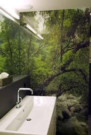 den tag im regenwald beginnen regula hotz raumgestaltung