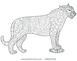 Panthers Coloring Pages Panther Black Animal Free Pink Florida Logo