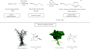 Chair Conformations Of Menthol by Renewable Sources From Plants As The Starting Material For