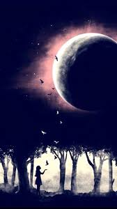Christmas Tree Cataract Images by 777 Best Luna Mia Images On Pinterest Drawings Moon And Moonlight