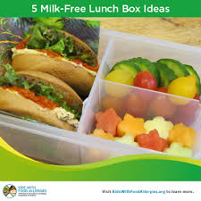 Back To School A Week Of Milk Free Alternatives For Lunch