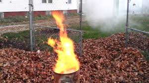 Smokeless Leaf Burner Yard Waste Disposer - YouTube Evergreen Winter Damage Learn About Treating And Preventing Cheat With Low Tunnels Fall Leaf Burn Youtube Fire Pit Safety Maintenance Guide For Your Backyard Installit Outdoor Burning Nonagricultural Bay Leaves In The House And See What Happens After 10 Minutes Tips For Removing Poison Ivy Bush Insect Pests How To Identify Treat Bugs That Eat To Guidelines Infographic Dont Holly Hollies With Scorch Glorious Autumn My Minnesota Backyard Prairie Roots April Month Powell River Today