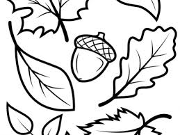 Download Coloring Pages Fall Leaves Large Leaf Page
