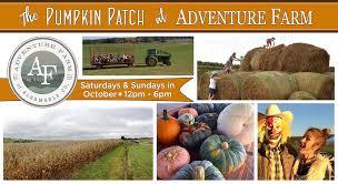 Lane Farms Pumpkin Patch 2015 by Adventure Farm U0026 Vineyard Adventure Farm U0026 Vineyard