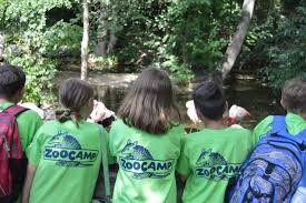 Roger Williams Pumpkin Spectacular 2017 by Zoocamp Spring Adventures At Roger Williams Park Zoo Rhode