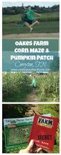 Goebberts Pumpkin Farm Haunted House by The 25 Best Pumpkin Patch Locations Ideas On Pinterest Pumpkin