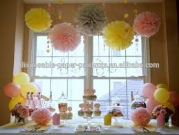 Pink Lemonade DIY Party Decoration Ideas Backdrop Hanging Tissue Paper Pom Flowers Balls Pack Of