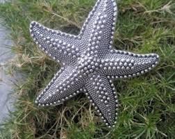 White Starfish Cabinet Knobs starfish knobs etsy