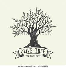 Hand drawn graphic logo with olive tree Vector illustration for labels packs or