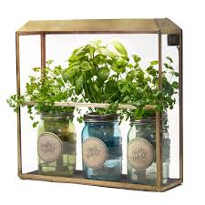 Antiqued Brass Growhouse Growhouse LED Growhouse UncommonGoods