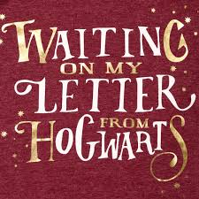 H Potter Girls Hogwarts Letter Tee Burgandy BIG W